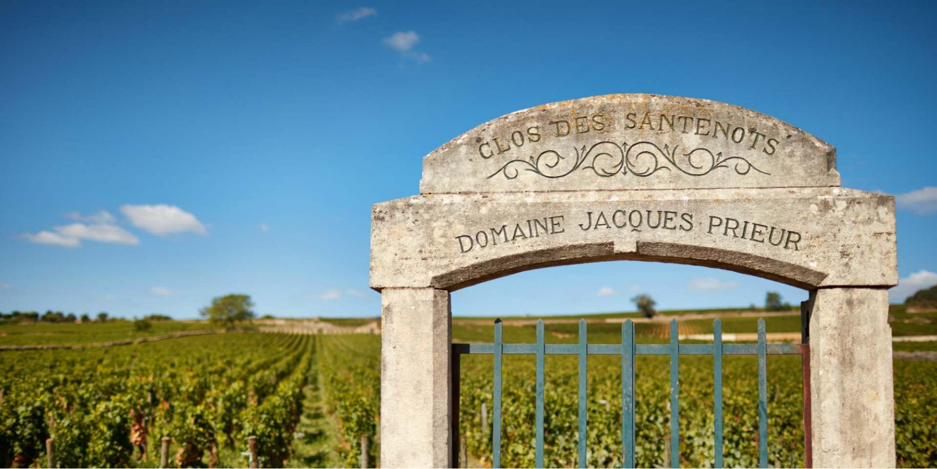 Domaine Jacques Prieur banner image