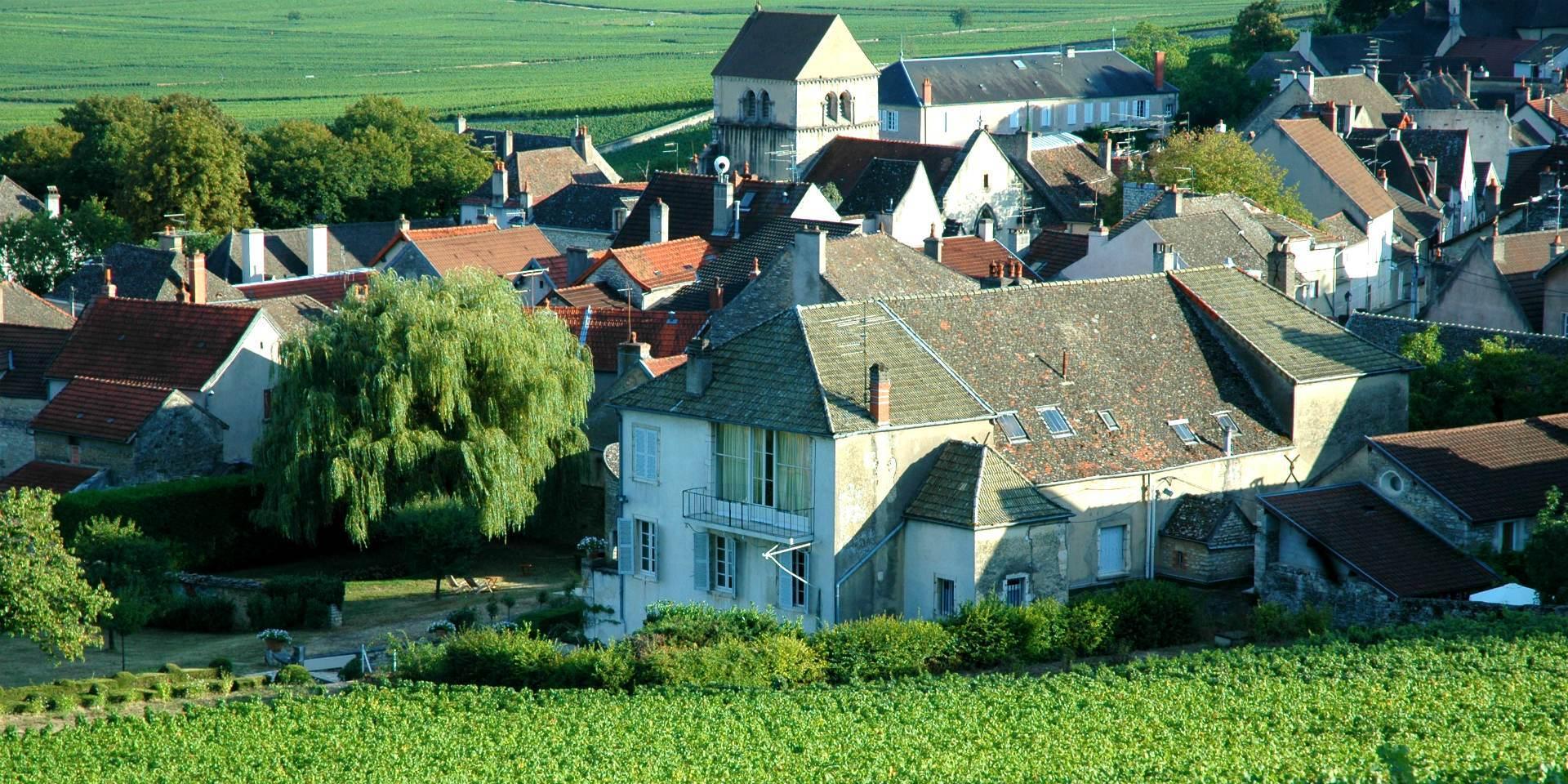 Domaine Marquis d'Angerville