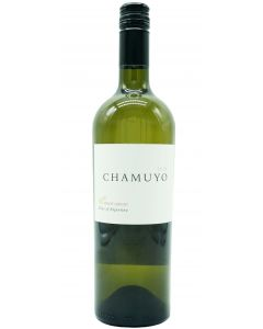 Chamuyo Pinot Grigio Mendoza Vineyards 2019