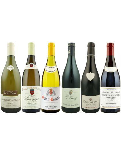 The Burgundy Taster Case