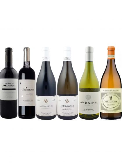 The Women in Wine Tasting Case
