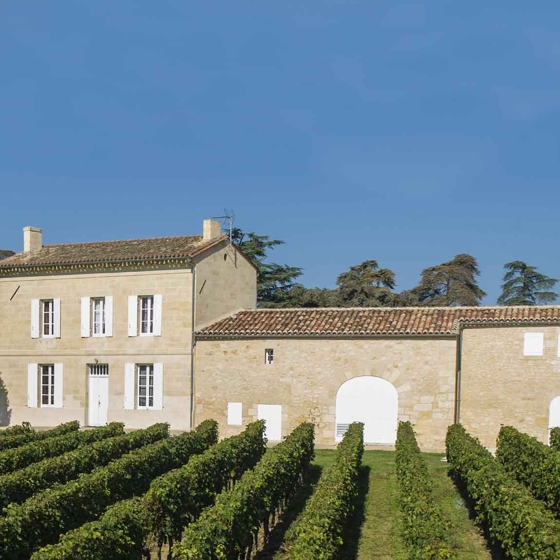 Rediscover Bordeaux Wine