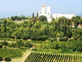 Cecilia Beretta, buy wine from italy, buy italian wine, buy wine from veneto