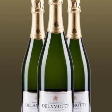 Champagne / Sparkling