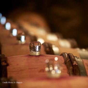 buy broking wine, buy fine wine, expensive wine