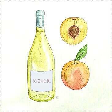 Chardonnay & Richer Whites wine