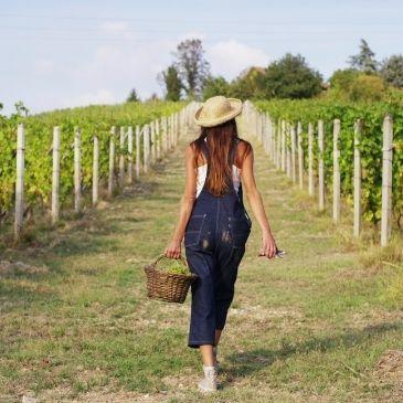international women day wine, melanie jappy,