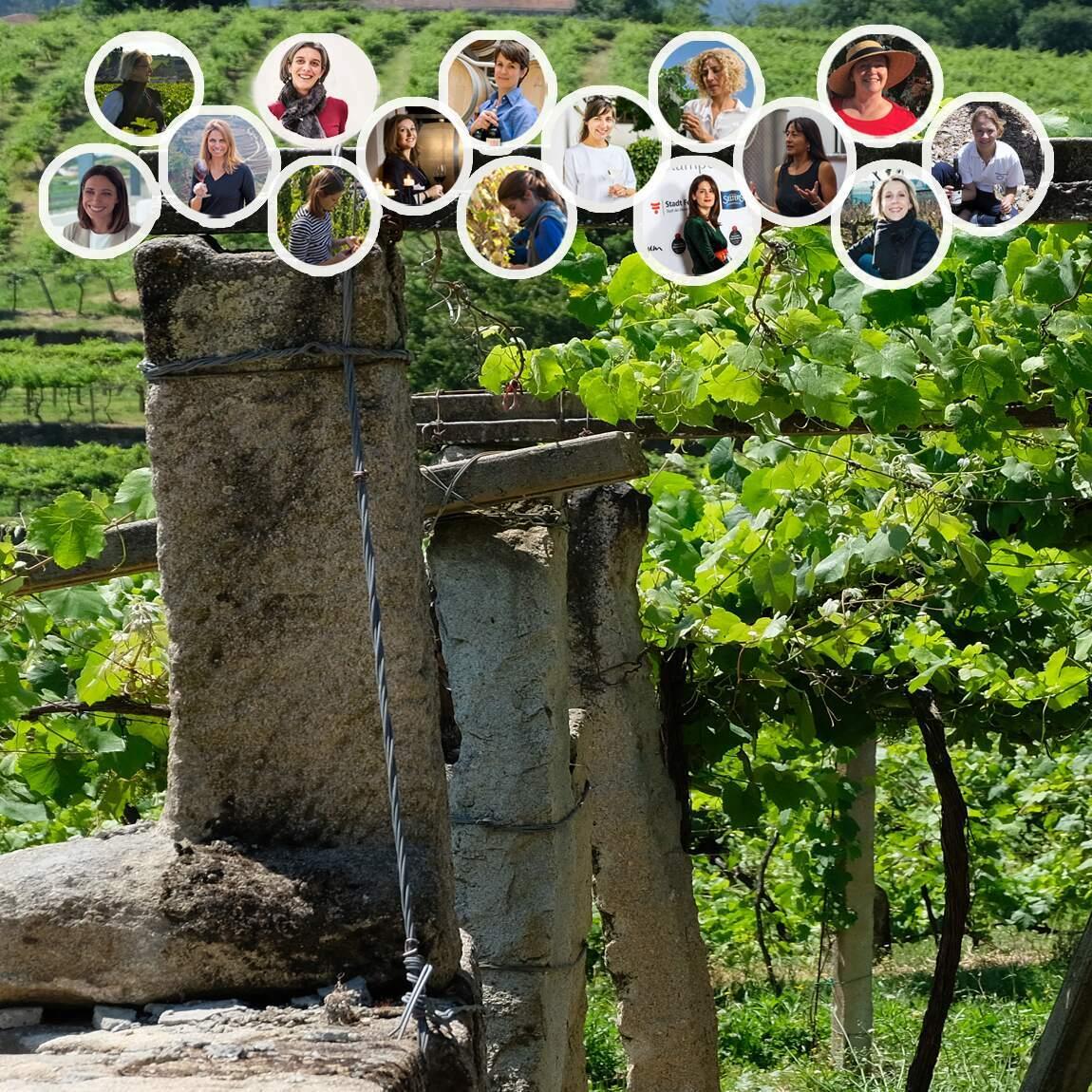 women in wine, wine produced by wine, international women day wine